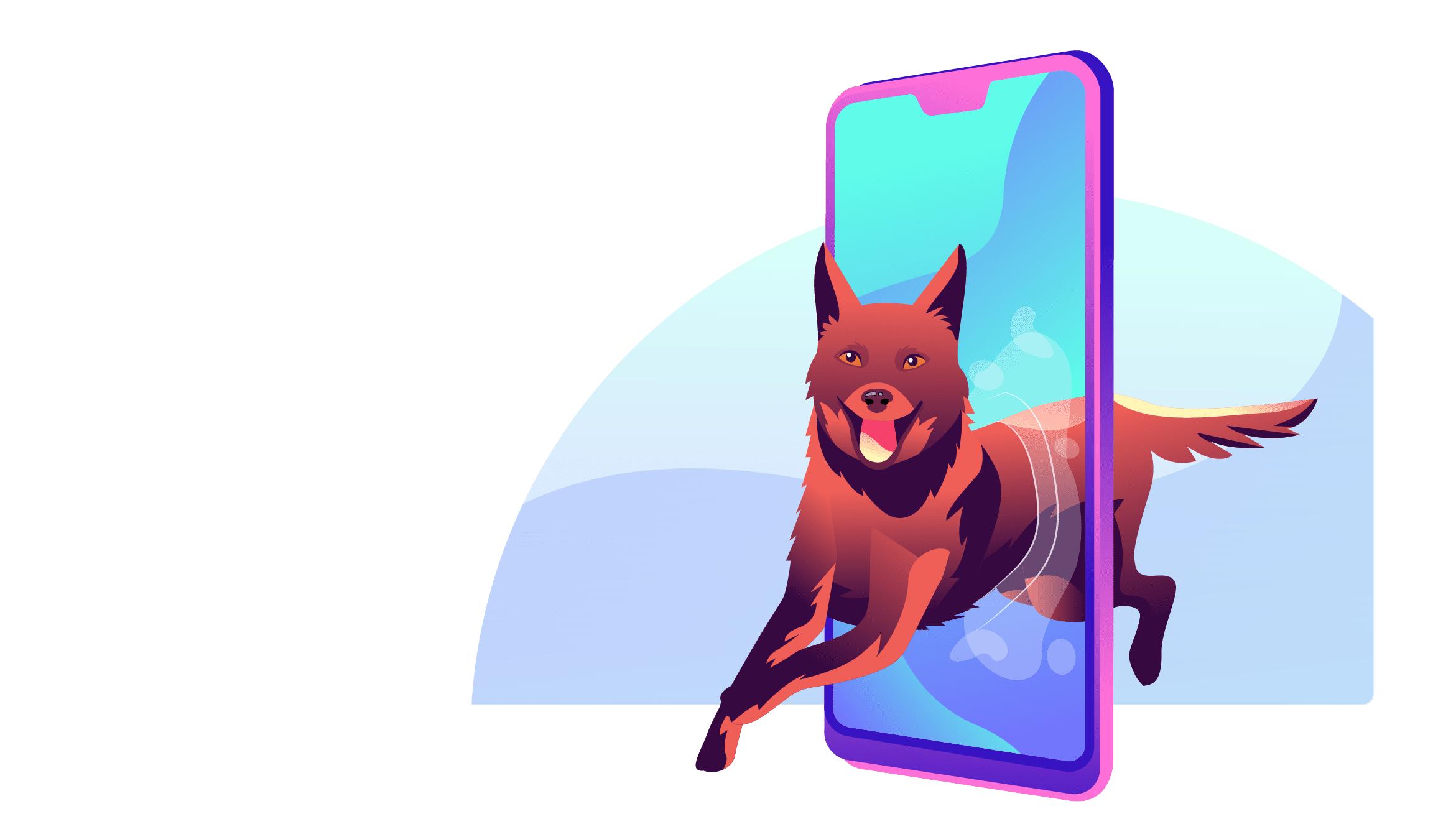 pet store app in mobile market