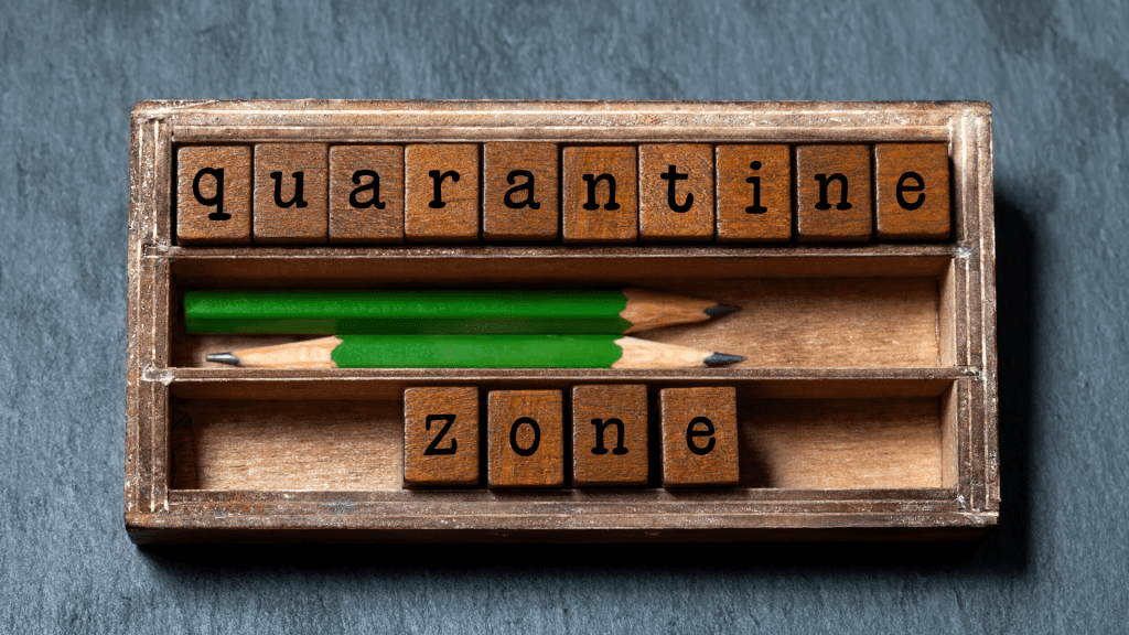 Use your quarantine time