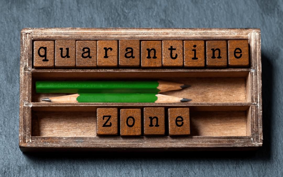 Best app building ideas to utilize your quarantine time: Top trends for 2020