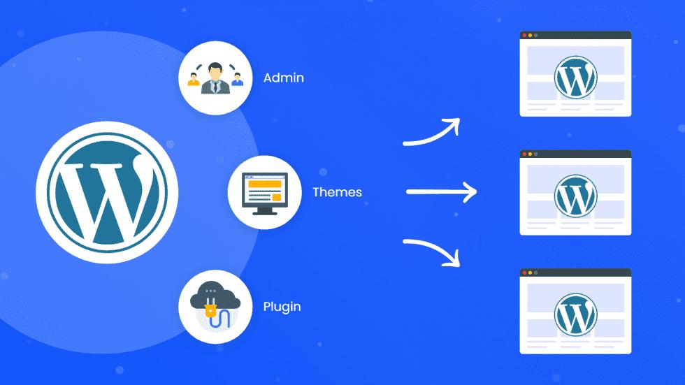 multisite network